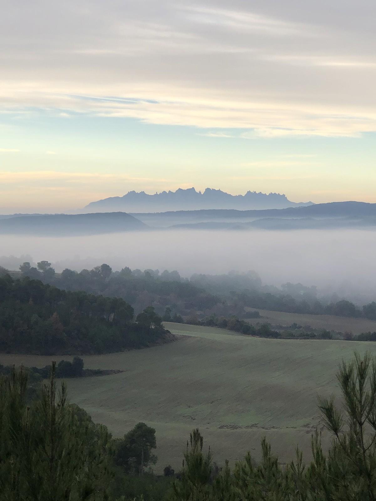 Un paisatge fals (fake) o real de Montserrat?